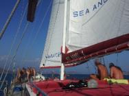 Cruise met Deniz Travel