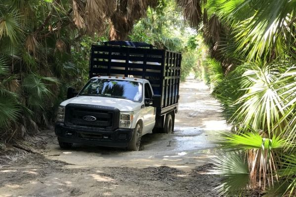 cozumel_vrachtwagen