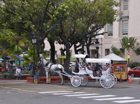 Puur Naturisme: Puerto Rico