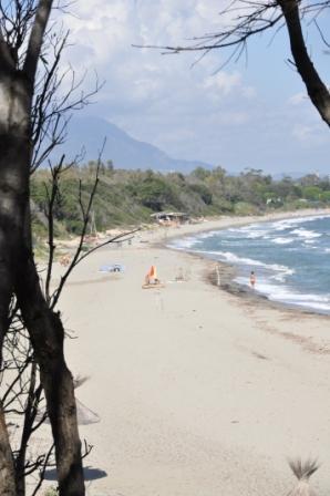 Bagheera, Corsica @Puur Naturisme